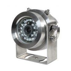 Seal Camera 03